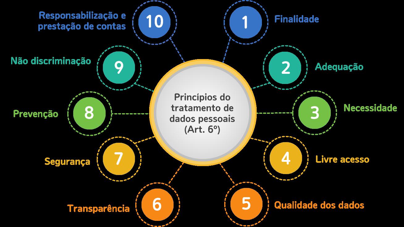 10 princípios do artigo 6º